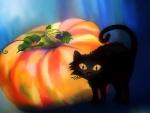 Pumpkin & Cat