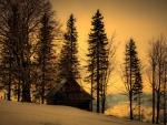 Cottage on Winter Mountain