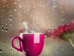 ☂ Coffee with views of the rain ☂