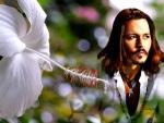 Johnny Depp ~ Oil painting