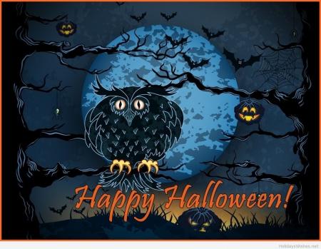 Happy Halloween Owl - banner, owl, happy, wallpaper
