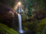 Sun Setting over Forest Waterfall