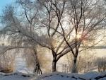 Sun Setting over Winter Landscape