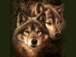 Faces of the wild