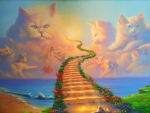 Heavenly path cats