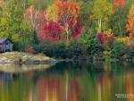 Autumn Lake in Canada