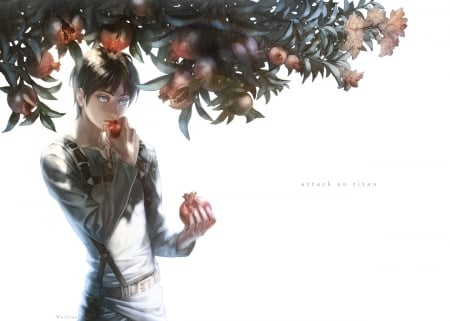 Pomegranate - pretty, hd, cg, guy, beautiful, eat, sweet, fruit, nice, attack on titan, anime, handsome, beauty, realistic, black hair, shirt, male, lovely, eren jaeger, sexy, plain, short hair, shingeki no kyojin, boy, cool, awesome, simple, eren, white, eating