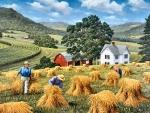Harvest Time F1