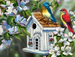 Dogwood Cottage F