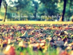 Falling leaves hide the path so quietly