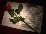 With a rose and a song I will come to your mind...