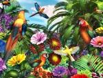 Jungle Parrots F