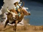 I'm A Cowboy!