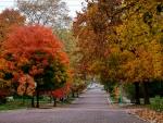 Down Autumn Road