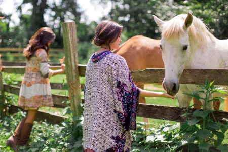 Visiting A Friend - fence, westerns, ranch, fun, outdoors, women, horses, cowgirls, females, girls, style
