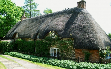 House with Thatched Roof in Wales - architecture, wales, thatched roof, houses