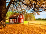 House amongst autumn leaves
