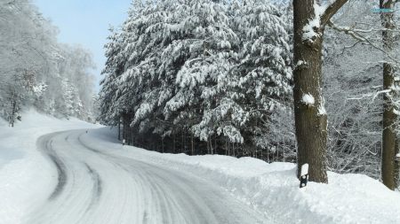 White Winter Road - nature, roads, snow, winter