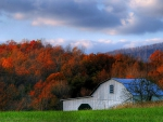 Barn and Autumn Trees