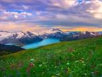 Garibaldi Provincial Park, Canada