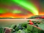 Winter - aurora borealis