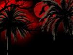 'Dark and eerie night'.....