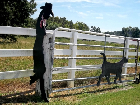 Abstract Cowgirl - ranch, fun, outdoors, statue, fences, cowgirls, western, dog, style