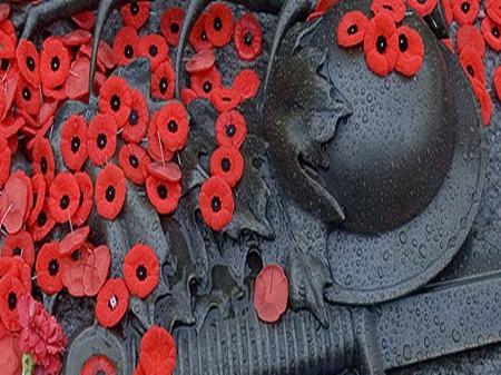 Poppy Day War Helmet Poppies Remembrance Day