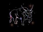 Zodiac ~ Taurus