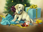 ..Puppy & Gifts..