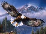 Eagle in Flight F2