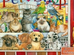 Pet Shop F