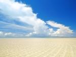 Endless Shoreline