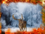Fall Elk Into Winter