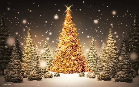 A Classic Christmas - snow, christmas, stars, pine, snow flakes, trees, feast