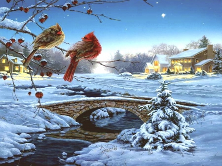 Winter - red, cottage, christmas, birds, beautiful, x-mas, winter, tree, water, splendor, bridge