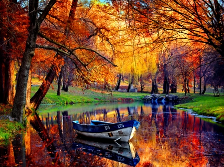 Beautiful Fall Scene With Small Inlet Grass Nature
