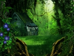 Abandoned House in Fantasy Forest