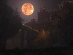 Moonlit Castle