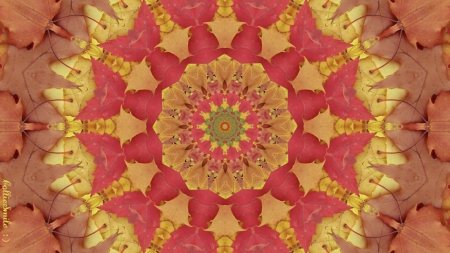 Made of Autumn Leaves - red, Fall, brown, golden, design, yellow, seasons, tan, co11age, leaf, kaleidoscope, kaleidoscopes too1, leaves, crimson, gold, Autumn