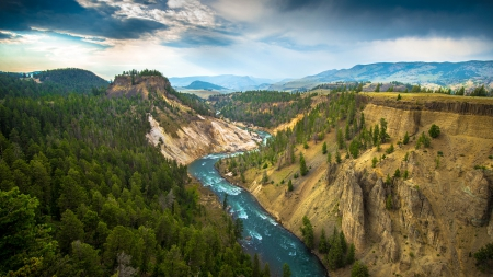 River at Yellowstone National Park - nature, trees, rivers, yellowstone