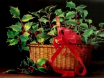 Nantucket Basket of Holly F1