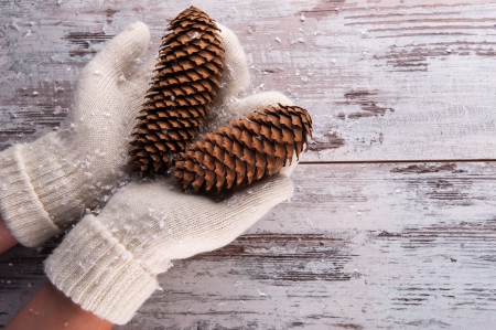 Winter - christmas, pinecone, winter time, xmas, winter, hands, gloves, merry christmas, magic christmas
