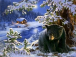Black bear on wintery hill