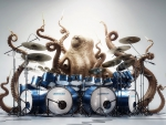 Octopus - musician