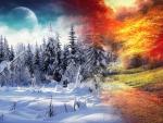 Autumn 2 Winter