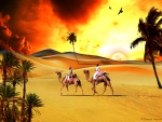 C.E. Fiery Sahara Sunset