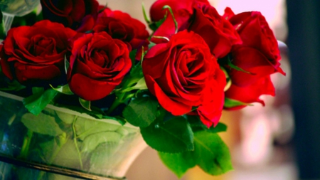 The wonderful roses! - red, wonderful, vases, flowers, beautiful, roses