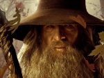 Gandalf, The Grey