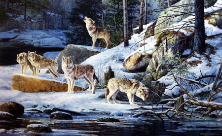 Cry Wolf - predator, wolfpack, painting, howl, nicht, wolves, artwork, winter